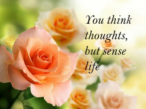 You think thoughts, but sense life
